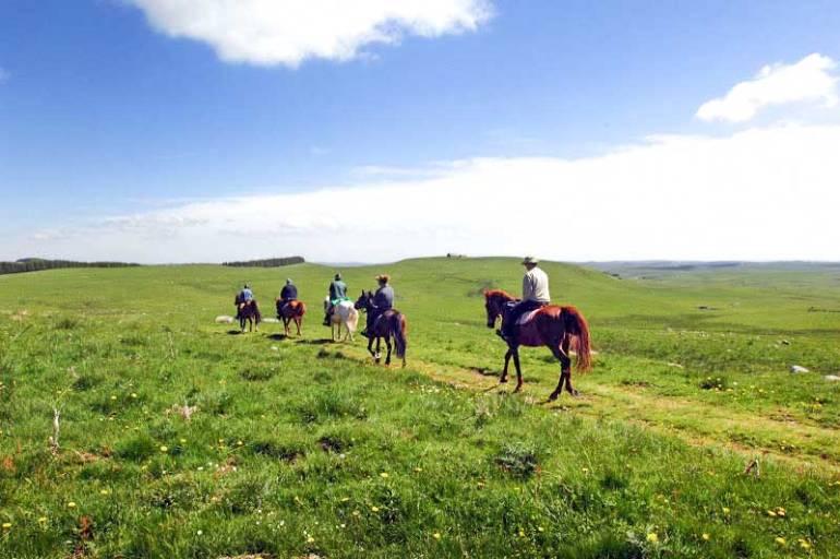 centre-equestre-nasbinals-aubrac